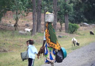 Arusha Safari, Road Side Travel