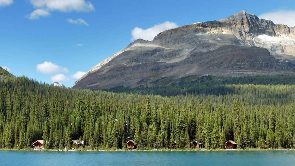 Lake O'Hara Cabins, Odaray Mountain, Banff Hiking Tour