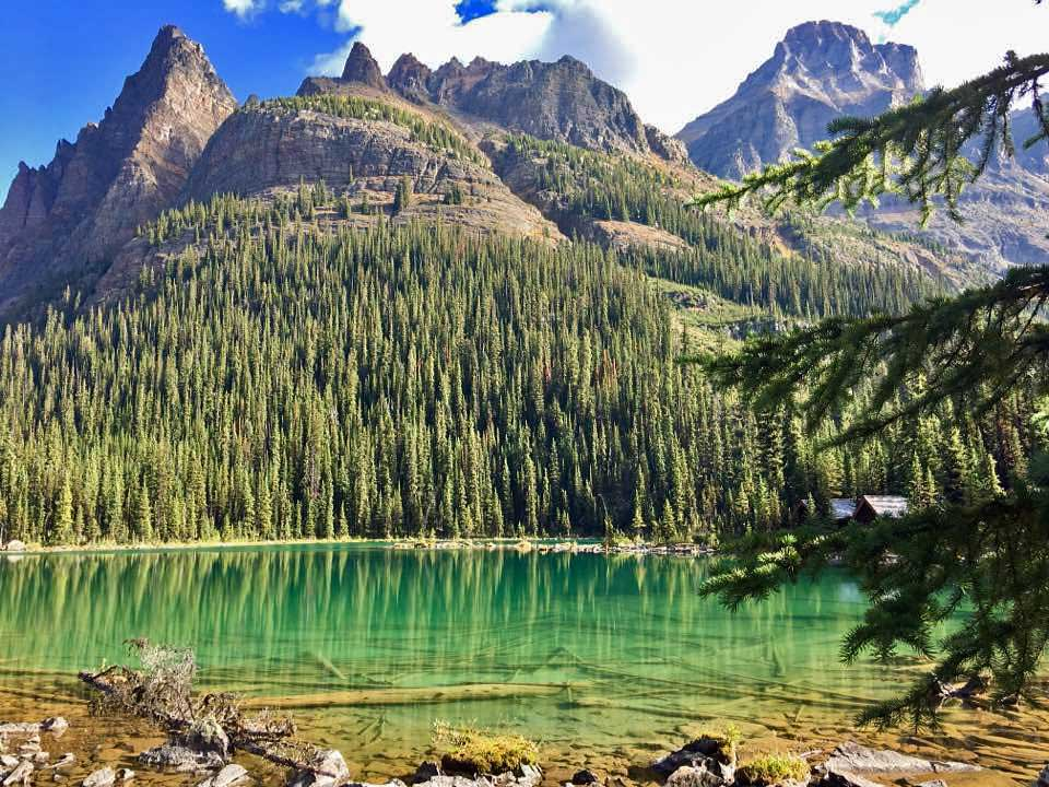 Lake O'Hara, Wiwaxy Peaks, Banff Hiking Tour