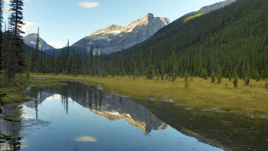 Ordaray Mountain from Lake O'Hara Access Road, Banff Hiking Tour