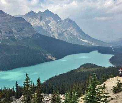 Banff Hiking Tour, Peyto Lake from Bow Summit Trail