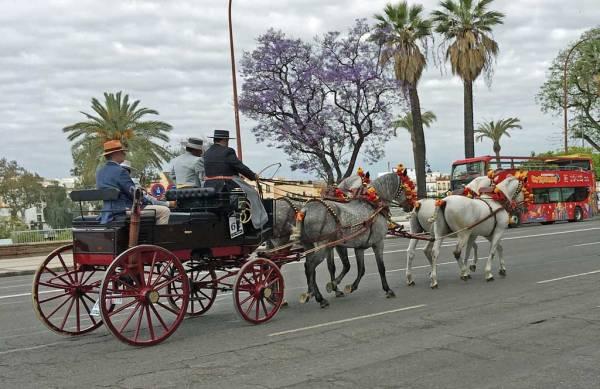 April Fair Carriage, Seville, Spain
