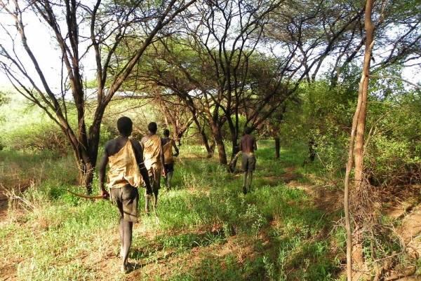 Hadzabe Men Hunting, Lake Eyasi Safari