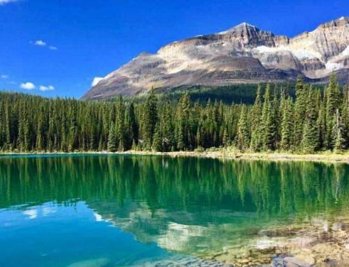 Banff Hiking Tour