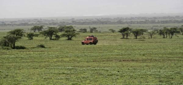 No Roads, Ngorongoro Conservation Area, Olduvai Gorge Safari