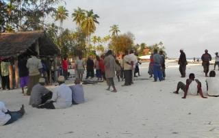 Nungwi Fish Auction, Zanzibar Tour