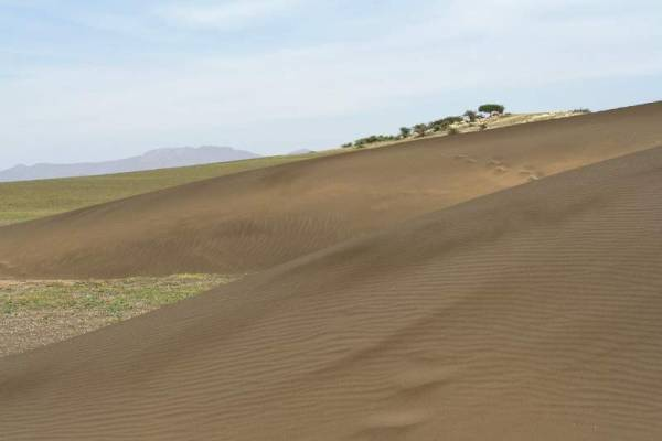 Shifting Sands, near Olduvai Gorge