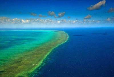 Arlington Reef, Visit Great Barrier Reef, Cairns