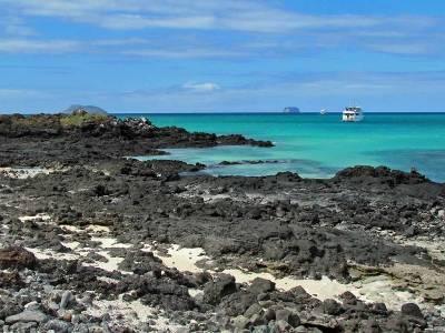 Bachas Bay, Santa Cruz Island, Puerto Ayora Visit