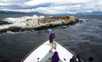 Beagle Channel Cruise, South American Cormorants Look Like Penguins