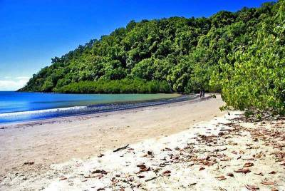 Daintree National Park, Port Douglas, Visit Great Barrier Reef