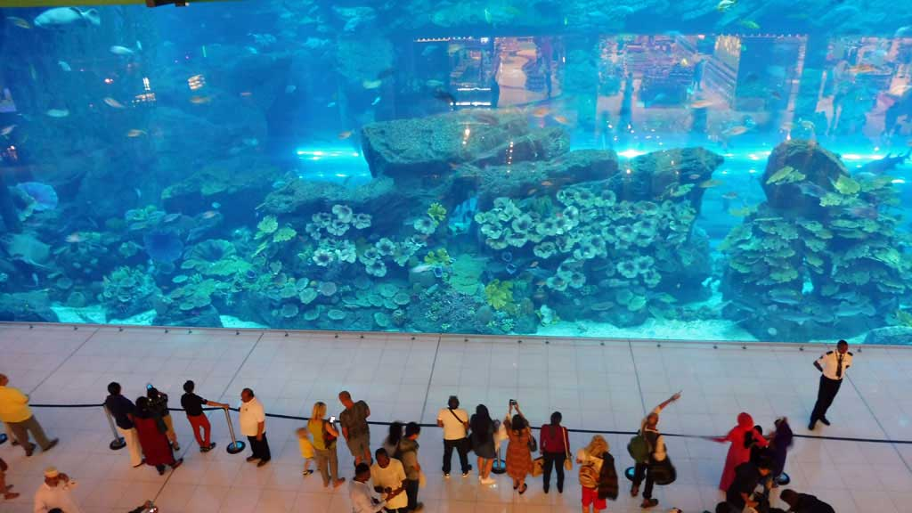 Emirates Visit, Dubai Mall Aquarium