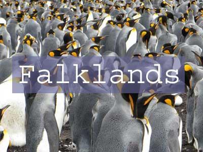 Falklands Title Page, Volunteer Point