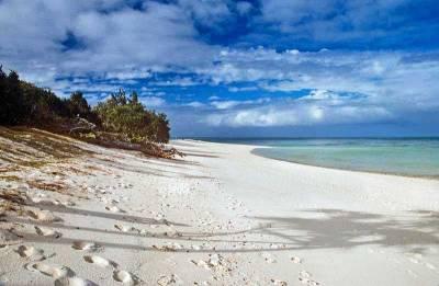 Heron Island, Rockhampton, Visit Great Barrier Reef