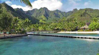 InterContinental Moorea Review, Dolphin Pool