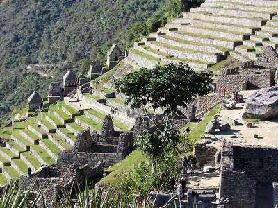 Visit Machu Picchu Terraces