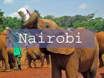 Nairobi Title Page, Sheldrick