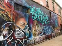 Valparaiso Shore Excursion Amazing Street Graffiti, Chile