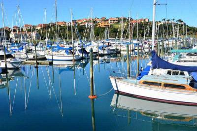 Westhaven Marina, Visit Auckland