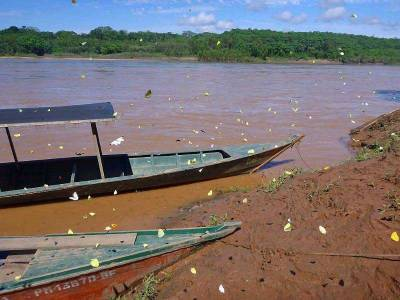 Butterflies, Wooden Boats, Tambopata River Adventure