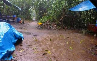 Downpour, Tambopata River Camp