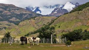 Horse Back Riding, Hiking El Chalten