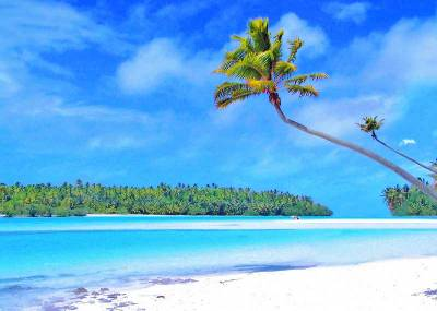 Palm Tree, One Foot Island, Visit Aitutaki