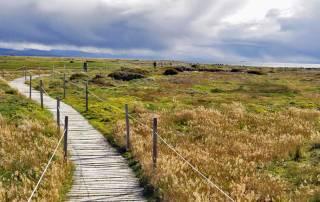 Walkways, Otway Penguin Colony