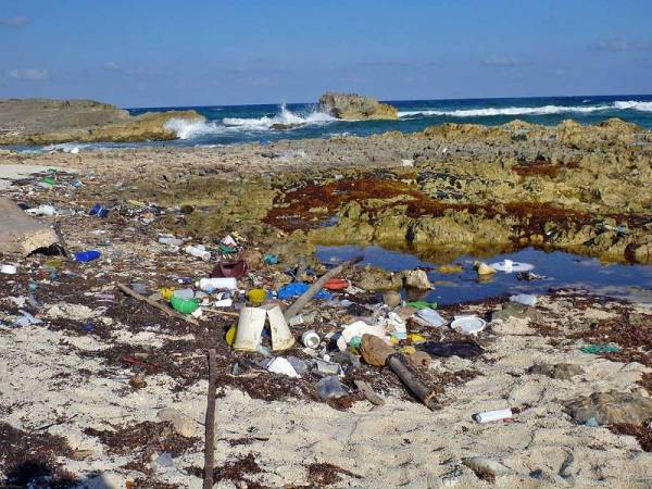 Plastic Debris from Caribbean, East Coast Cozumel, Cozumel Tour