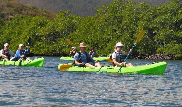 Kayaking, Mangrove Lagoon, St Thomas, Visit the U.S. Virgin Islands