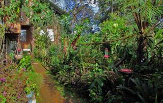 Mindo Lindo Property, Mindo Cloud Forest