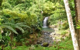 Annandale Falls, Grenada Island Tour