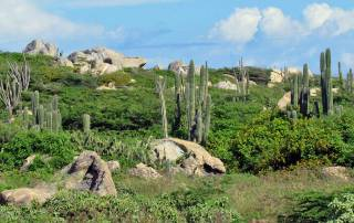 Arikok National Park, Aruba 4x4 Adventure