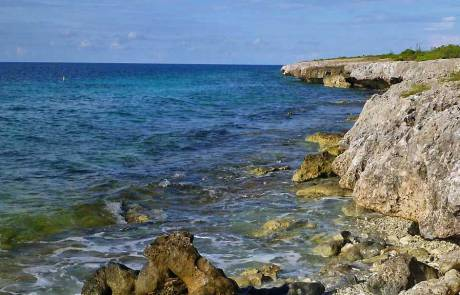 Shoreline, Bonaire Biking Excursion