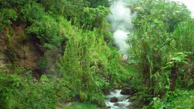 Fumarole Steam Vents, Visit Dominica