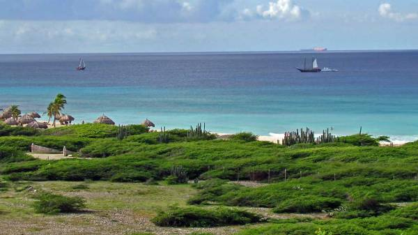 Northwest Shore, Visit Aruba