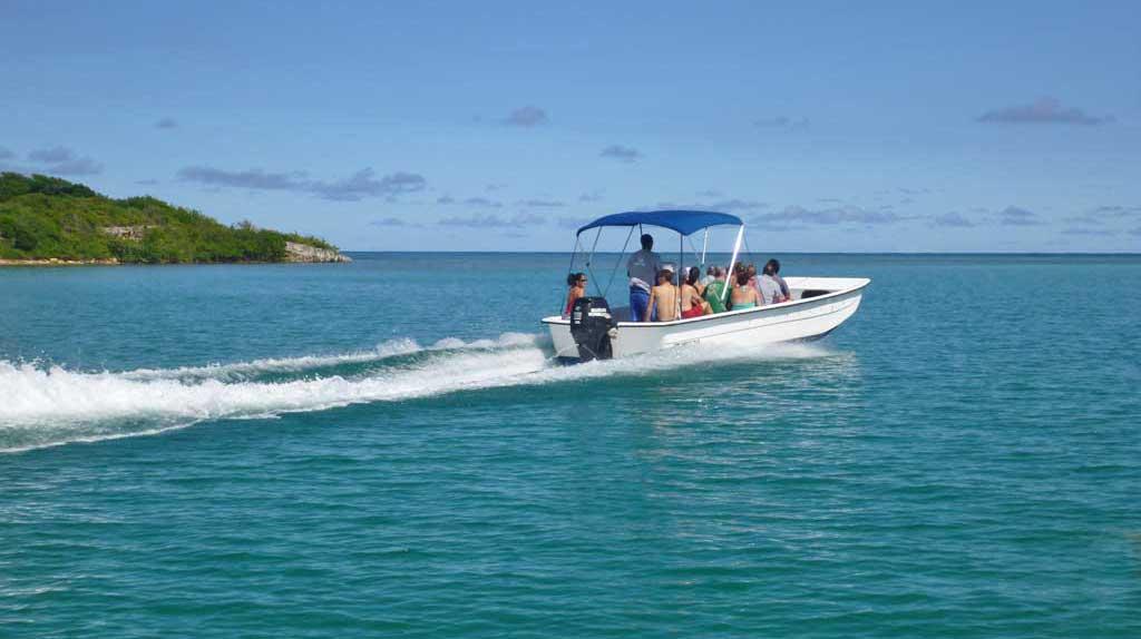 Snorkel Boat, Stingray City Snorkel, Antigua