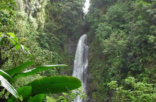 Trafalgar Falls, Visit Dominica