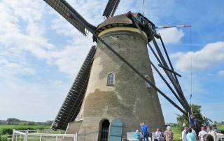 Harness turns Windmill, Kinderdijk, Rhine River Cruise