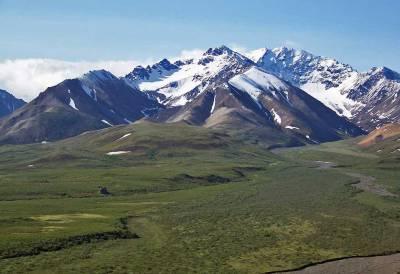 Denali National Park View