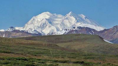 Denali Tour Bus View, Denali Day Tour
