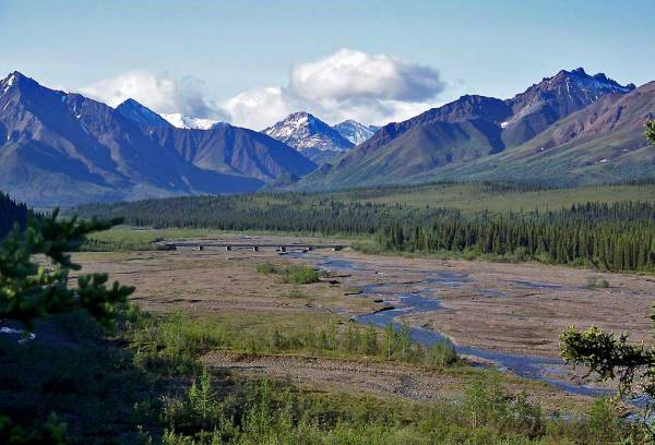 Glacial Braided River Bed, Denali Day Tour