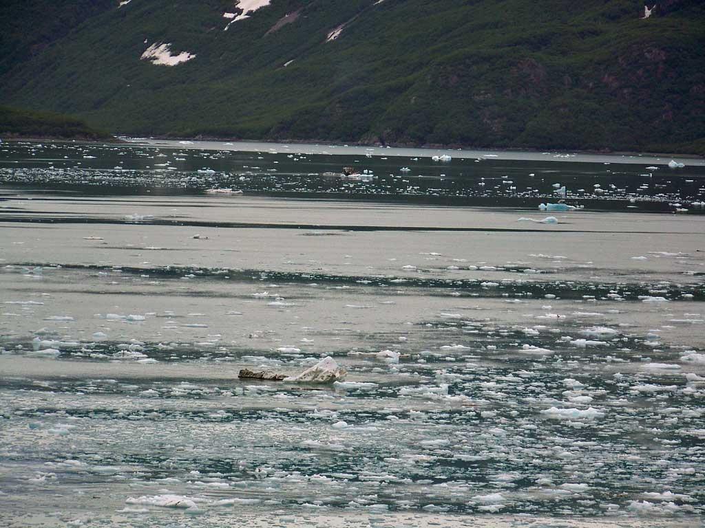 Hubbard Glacier Ice in Sea Water