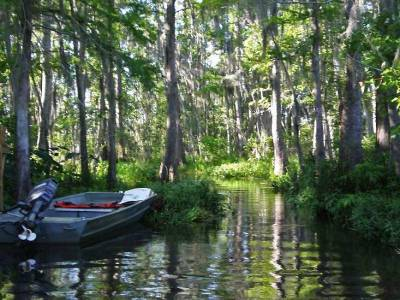 Bayou Touring, Visit New Orleans