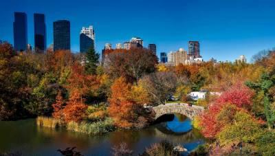 Central Park, Visit New York