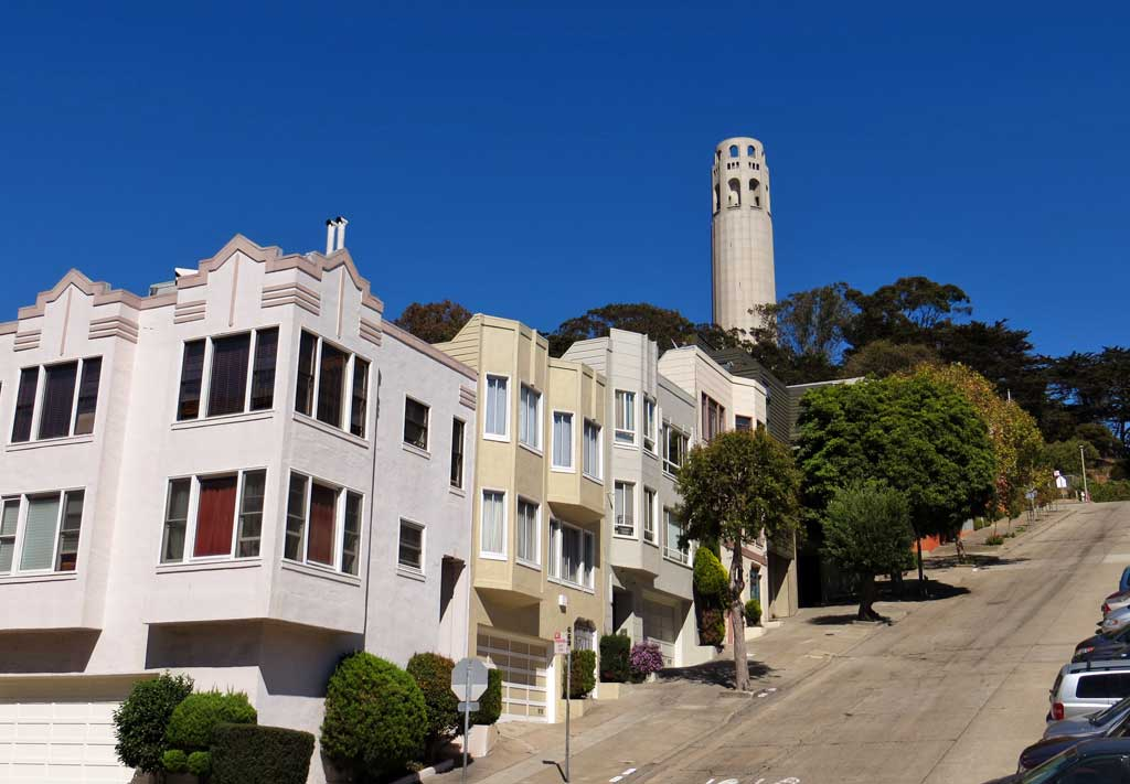 Top 10 Things to do in San Francisco | What to do in San ... |Coit Tower Flowers
