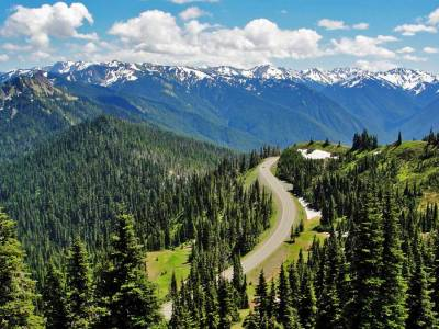 Hurricane Ridge, Olympic National Park, Visit Seattle