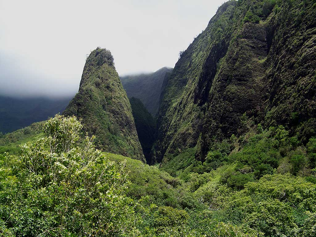 Iao Valley Hawaii Nature Center