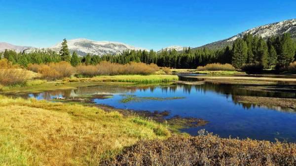 Tuolumne Meadows, Visit Yosemite