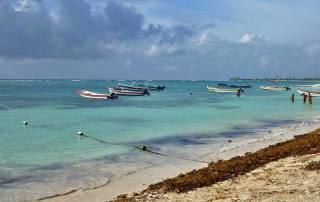 Akumal Bay, Riviera Maya, Akumal Bay Turtle Snorkel